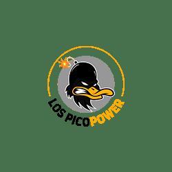 logo picopower